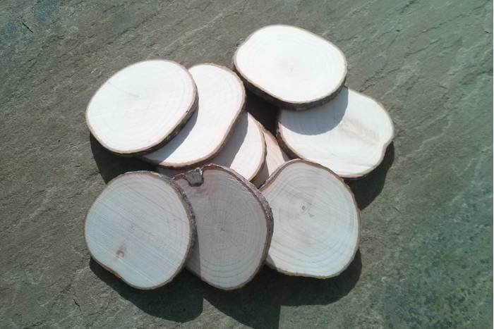 branch slices ready for engraving